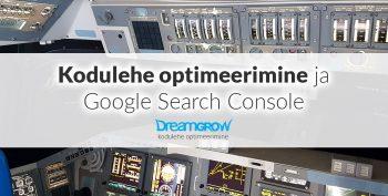kodulehe optimeerimine google search console abiga