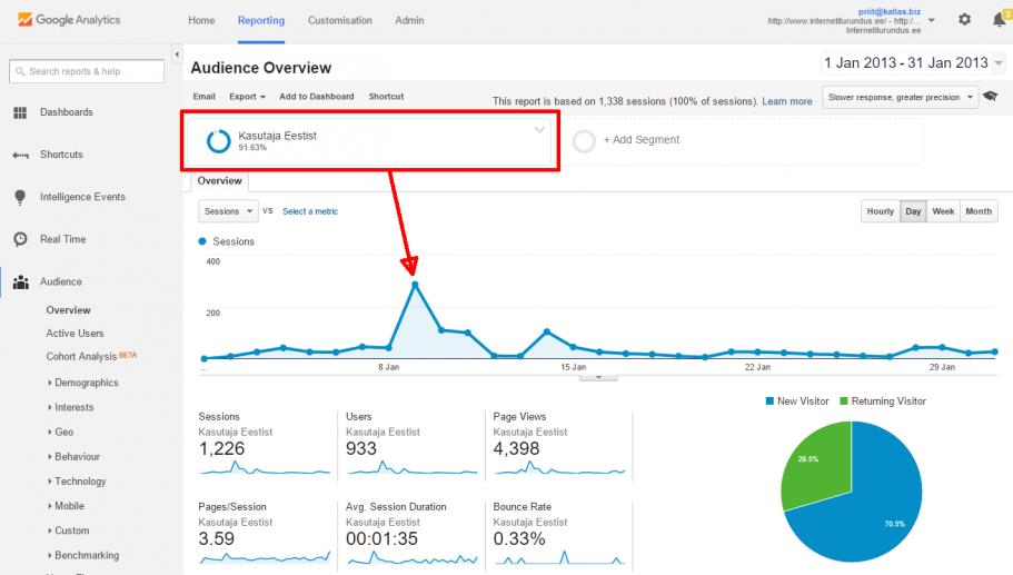 google analytics spamm segment eesti