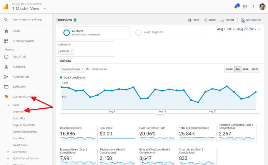 google analytic conversion raport goalid