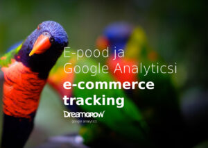 e pood ja google analyticsi e commerce tracking